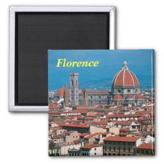 フィレンツェの磁石 マグネット