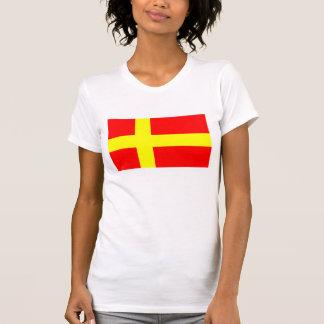 フィンの民族の旗スカンジナビアを話しているスウェーデン語 Tシャツ