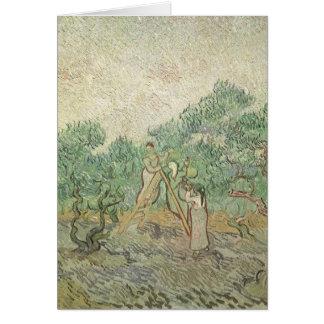 フィンセント・ファン・ゴッホ著オリーブ色の盗品、ヴィンテージの芸術 カード