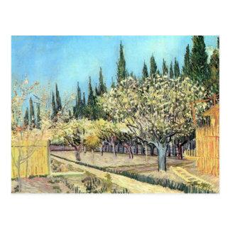 フィンセント・ファン・ゴッホ著花盛りのフルーツの庭 ポストカード