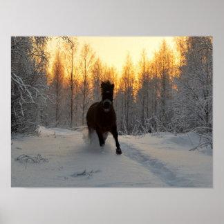 フィンランドの冬の連続した馬 ポスター