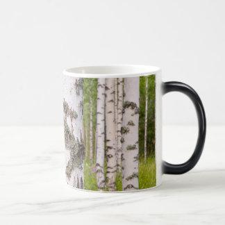 フィンランドの森林の樺の木 モーフィングマグカップ