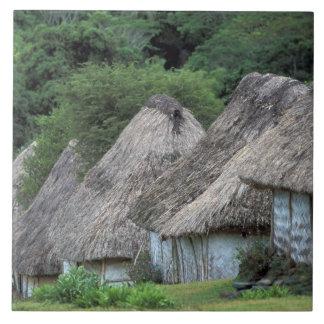 フィージー、Vitiの昔ながらのな小屋の家 タイル