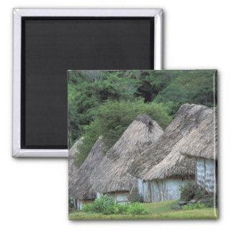 フィージー、Vitiの昔ながらのな小屋の家 マグネット