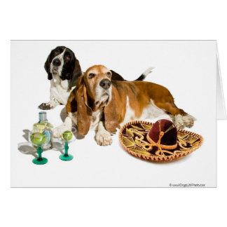 フェスタのバセット犬カード カード