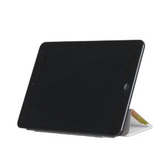 フェニックスのスカイライン iPad MINIカバー