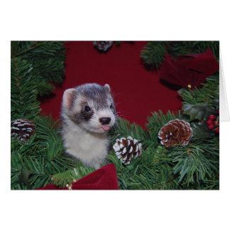 フェレットのクリスマスカード カード