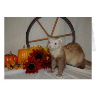 フェレットの秋の写真 カード