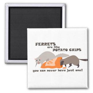 フェレットはポテトチップの磁石のようです マグネット