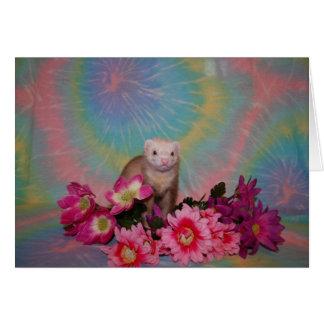 フェレット-花 カード