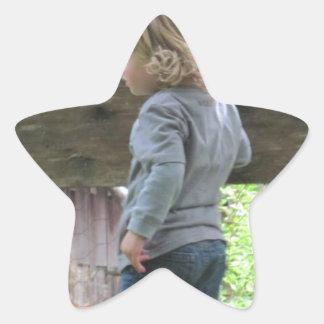 フェンス越しにかいま見ること 星シール