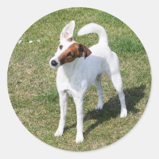フォックステリア犬の滑らかな犬の美しい写真のステッカー ラウンドシール
