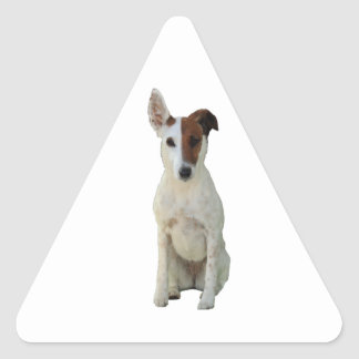 フォックステリア犬の滑らかな犬の美しい写真のステッカー 三角形シール