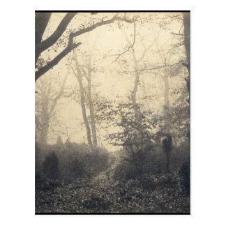 フォンテンブローの森林 ポストカード