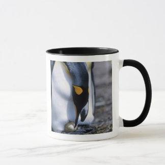 フォークランド諸国。 キングペンギンは独身のな卵をがちです マグカップ