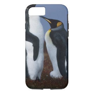 フォークランド諸国。 2匹のキングペンギンの立場 iPhone 7ケース