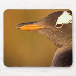 フォークランド諸国。 Gentooのペンギン。 (Pyroscelis マウスパッド