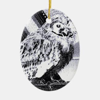 フクロウの写真 セラミックオーナメント