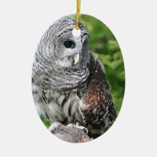 フクロウの目の目の美しいベストはカスタマイズ セラミックオーナメント
