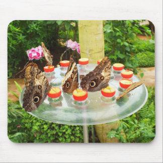 フクロウの蝶 マウスパッド