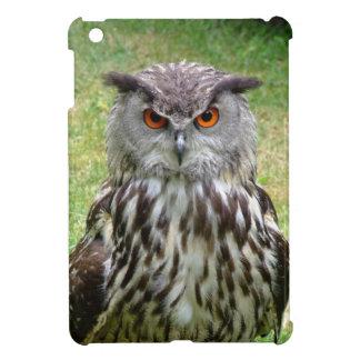 フクロウの顔 iPad MINIケース