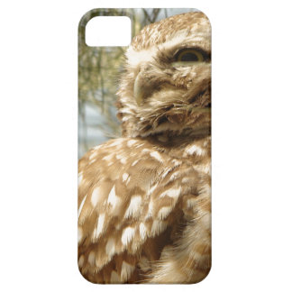 フクロウの鳥の野性生物動物を掘り進んでいるベビー iPhone SE/5/5s ケース