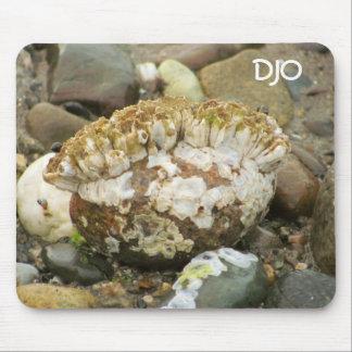 フジツボのモホーク族の人のビーチの石 マウスパッド