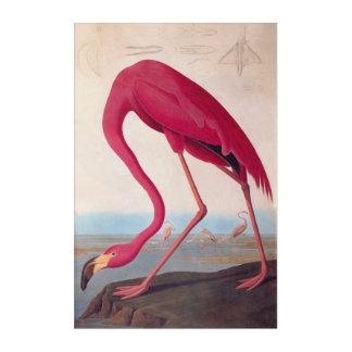 フラミンゴのヴィンテージのAudubonのアメリカのピンクの蔵書票 アクリルウォールアート