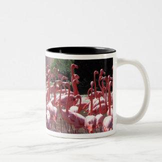 フラミンゴの道 ツートーンマグカップ