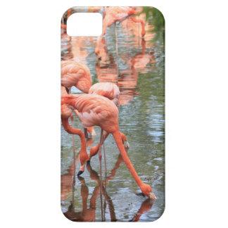 フラミンゴの電話箱 iPhone SE/5/5s ケース