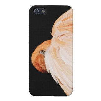 フラミンゴ iPhone 5 カバー