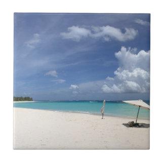 フラメンコのビーチCulebraプエルトリコ タイル