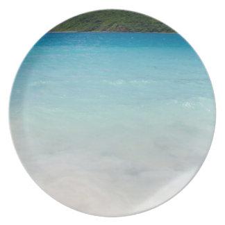 フラメンコのビーチCulebra プレート