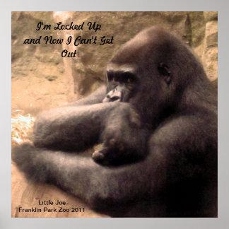 フランクリン公園の動物園のゴリラのプリント ポスター