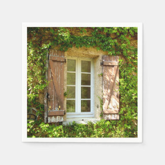 フランスのな農家の窓及びシャッター紙ナプキン スタンダードカクテルナプキン