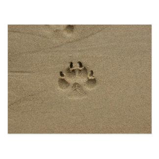 フランスの砂の足音 ポストカード