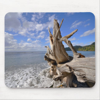 フランス人のビーチの海岸線の流木 マウスパッド