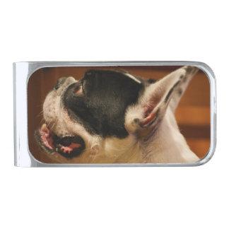フランス語bulldog.png シルバー マネークリップ