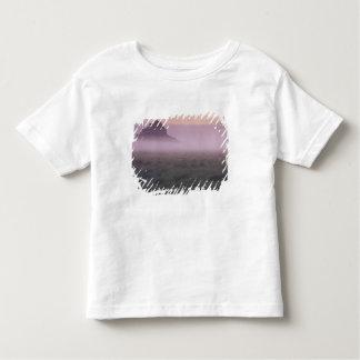 フランス、ノルマンディーMont St.マイケル。 朝の霧 トドラーTシャツ