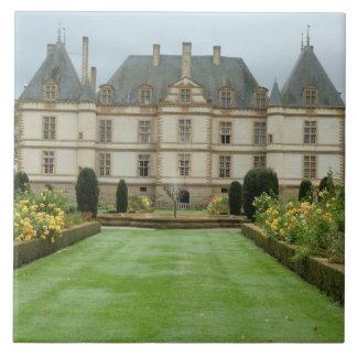 フランス、バーガンディ、Cormatin、Chateau de Cormatin、 タイル