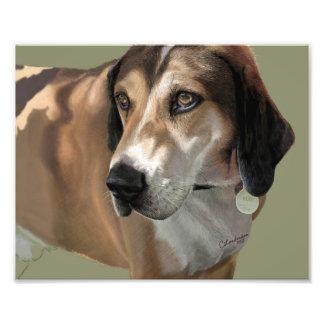 フリースブランケット犬毛布 フォトプリント