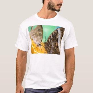 フルーツの蝶 Tシャツ