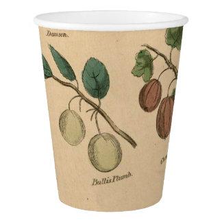 フルーツ及び葉 紙コップ