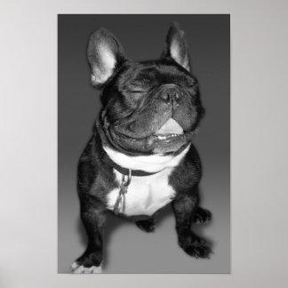 フレンチ・ブルドッグのスマイルの芸術的な写真撮影 ポスター