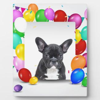 フレンチ・ブルドッグの子犬のカラフルの気球の誕生日 フォトプラーク