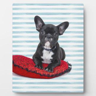 フレンチ・ブルドッグの子犬のポートレート フォトプラーク
