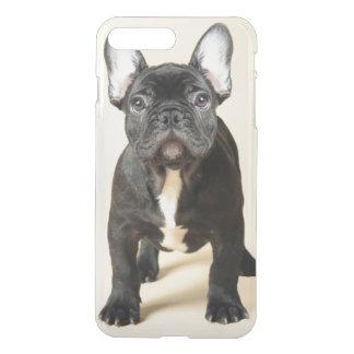 フレンチ・ブルドッグの子犬の地位のスタジオのポートレート iPhone 8 PLUS/7 PLUS ケース