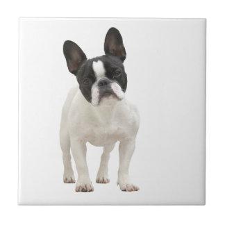 フレンチ・ブルドッグ犬の美しいタイルかtrivetのギフト タイル