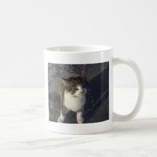 フレンドリーな子ネコ コーヒーマグカップ
