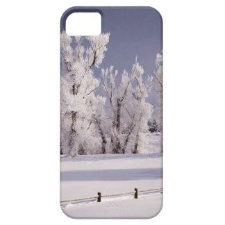フロストは木および塀、コロラド州を覆いました iPhone SE/5/5s ケース